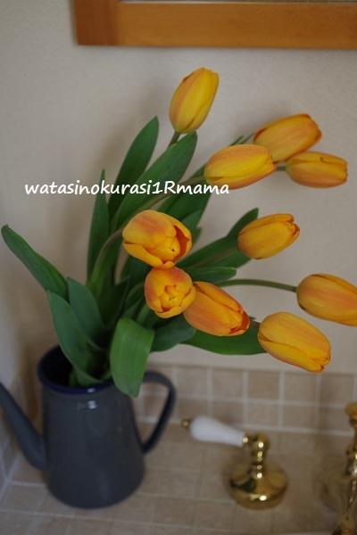 立春と旅人からの写真   ミュンヘン_c0365711_14213514.jpg