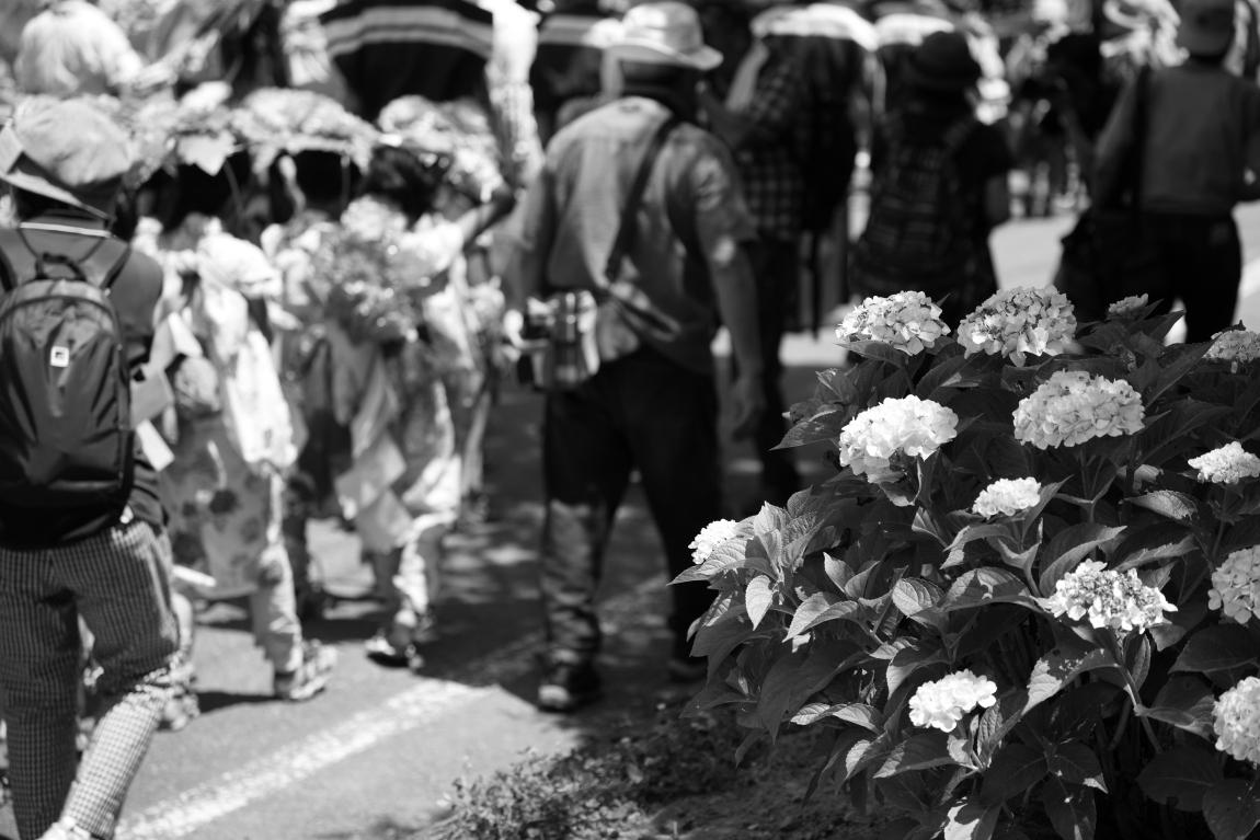 摂氏36度・Ⅲ~上田市別所温泉「岳の幟」~_d0349418_21154742.jpg