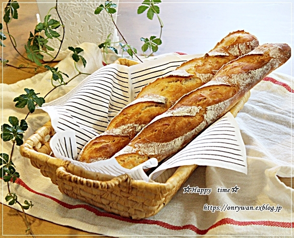 焼き鮭弁当とヨーグルト酵母でバゲット♪_f0348032_17372311.jpg