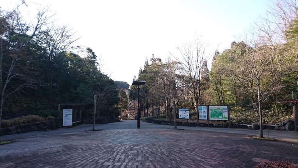 朝一番で東山植物園!!_f0373339_15133993.jpg