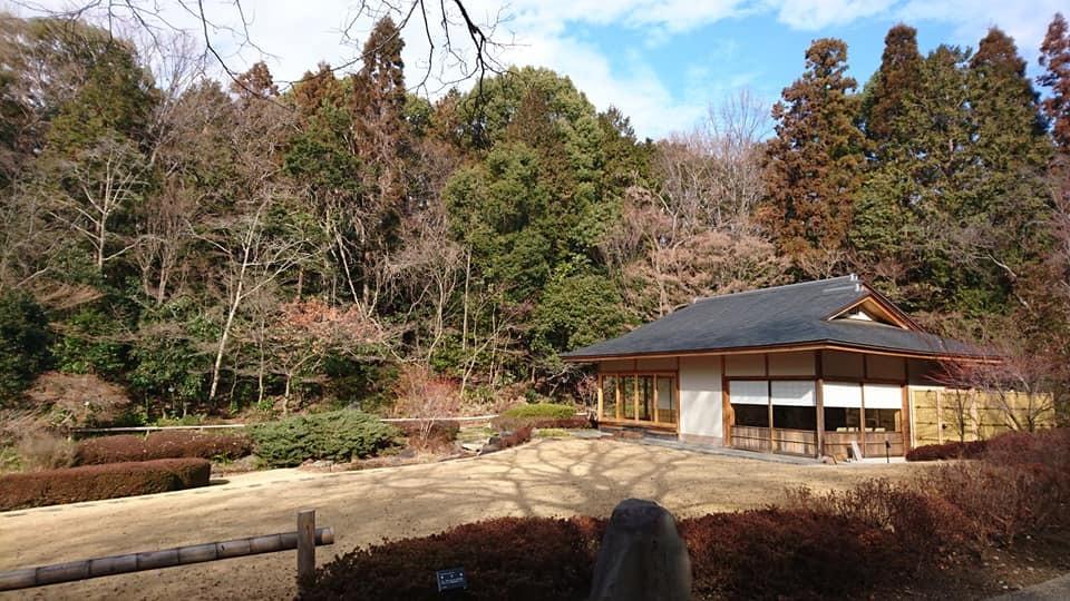 朝一番で東山植物園!!_f0373339_15144788.jpg