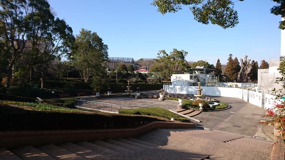 朝一番で東山植物園!!_f0373339_15161503.jpg