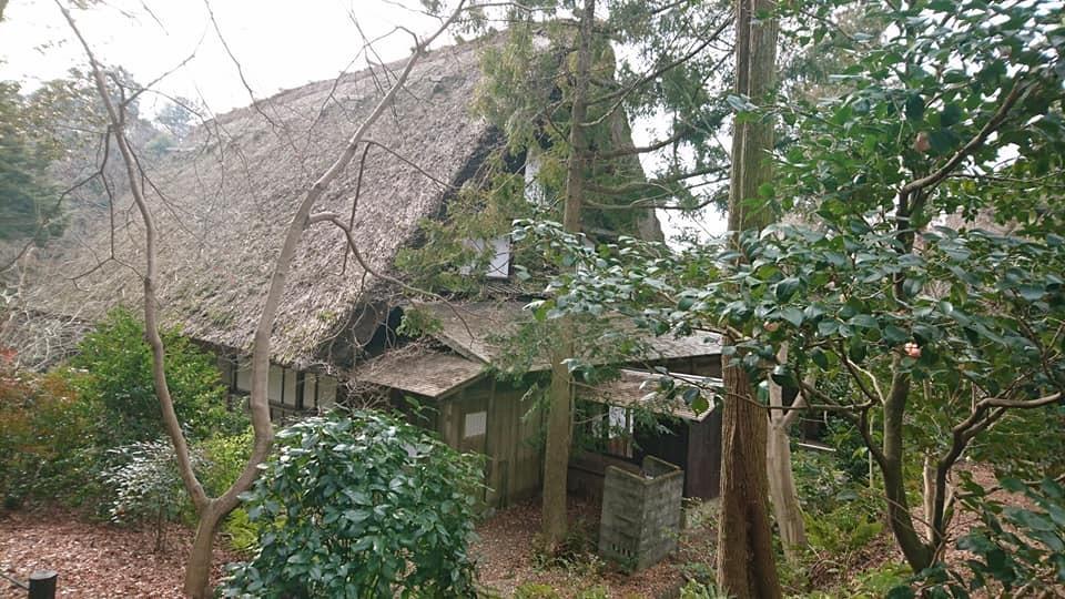 朝一番で東山植物園!!_f0373339_15305475.jpg