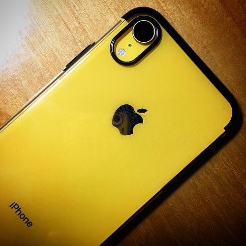 iPhone XR_c0063445_23560327.jpeg