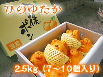 熊本産「デコポン」ハイペースで売れてます!数量限定のためお急ぎ下さい!熊本限定栽培品種「ひのゆたか」_a0254656_17460027.jpg