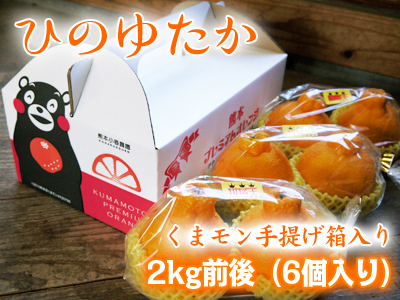 熊本産「デコポン」ハイペースで売れてます!数量限定のためお急ぎ下さい!熊本限定栽培品種「ひのゆたか」_a0254656_18274987.jpg
