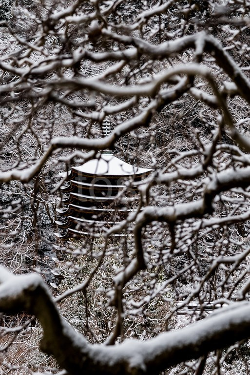 雪の多武峰と細川_c0350572_22003221.jpg