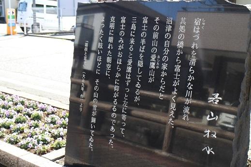 ぽかぽかお天気_b0016474_13453551.jpg