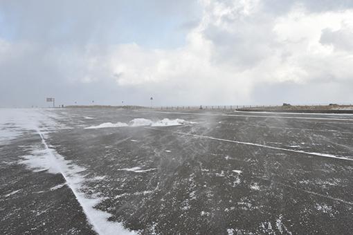 海辺の翌日2019.02.01_b0259218_05443834.jpg