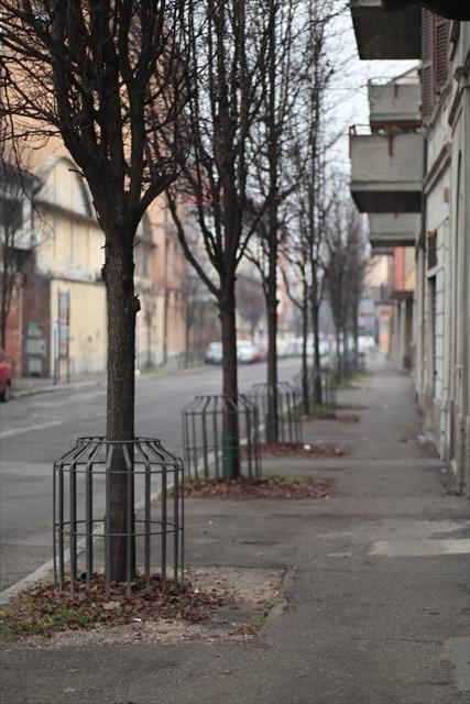 クレモナの風景 2月_d0047461_07022000.jpg