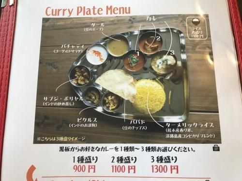 Spice Curry Kofta._c0153966_20161569.jpeg