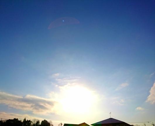 2/5(火)①    今空♪_d0362666_08535822.jpg