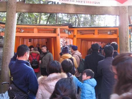 日本滞在 2 - 伏見稲荷 -_a0280569_19243481.jpg
