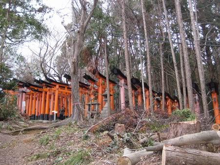 日本滞在 2 - 伏見稲荷 -_a0280569_19305149.jpg
