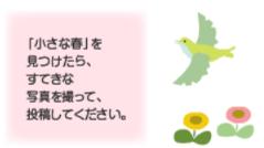 【キャンペーン】『小さい春、み~つけた』雪解けや開花…うれしい春の便りを募集中!
