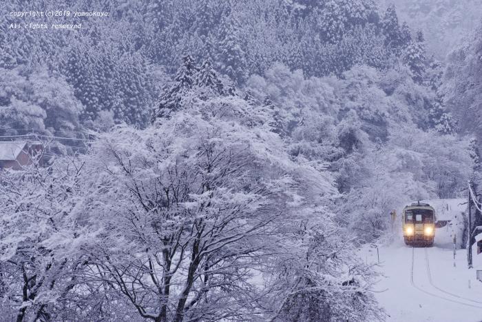 まだ降り続く雪に_d0309612_00124538.jpg