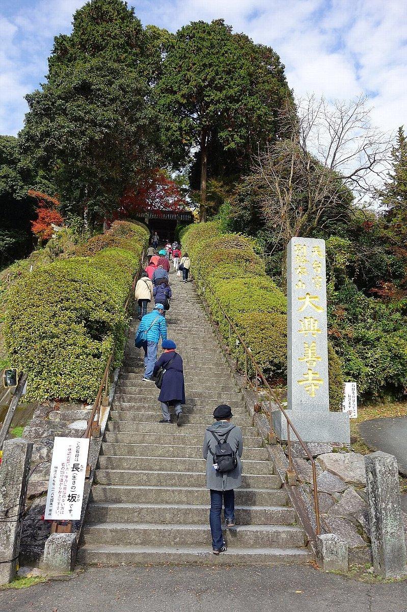 小松山 大興善寺(その1)_c0112559_08133559.jpg
