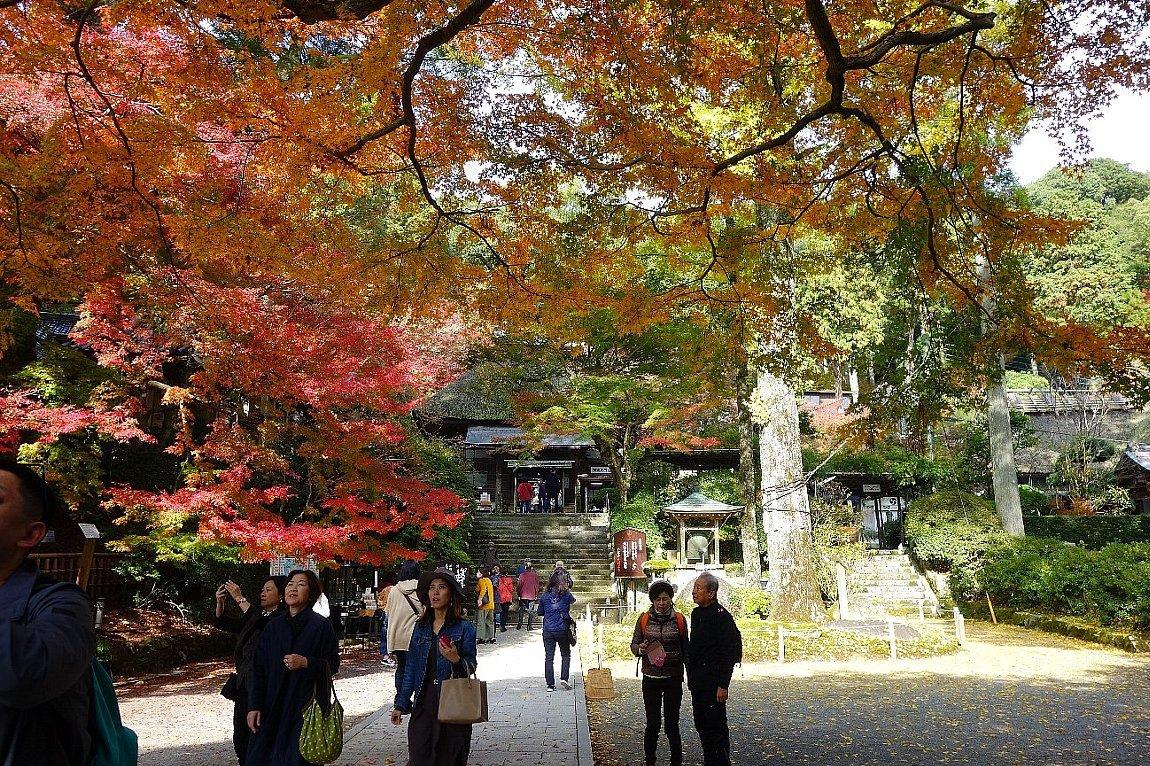 小松山 大興善寺(その1)_c0112559_08182028.jpg