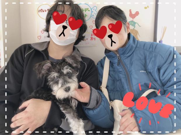 ぽるかちゃん通信_c0245679_22103129.jpg