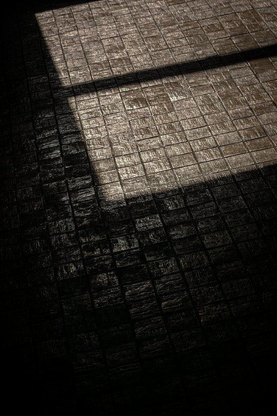 古き市役所に棲む光蜥蜴_d0353489_17483752.jpg