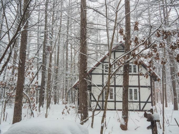 """ついに雪のスイッチが入ったかな?ひさびさの""""雪リス""""_f0276498_23485343.jpg"""