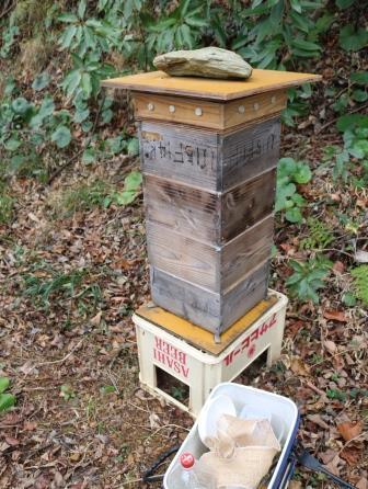 日本蜜蜂のアカリンダニ対策で蟻酸を投与_f0176521_22153049.jpg