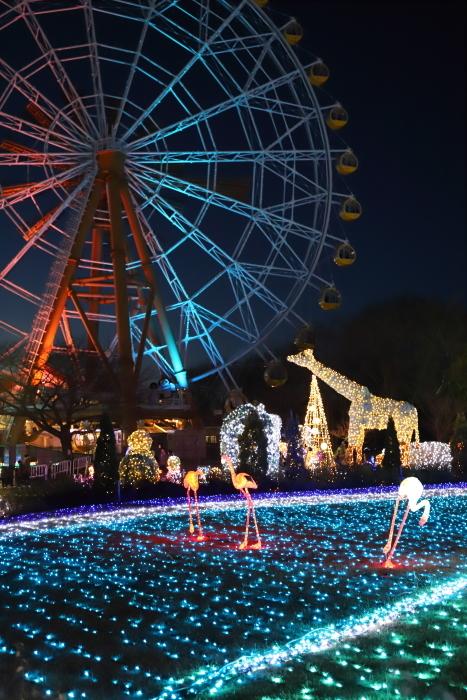 【東武動物公園】ウィンターイルミネーション_f0348831_23343437.jpg
