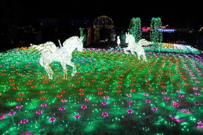 【東武動物公園】ウィンターイルミネーション_f0348831_23350606.jpg