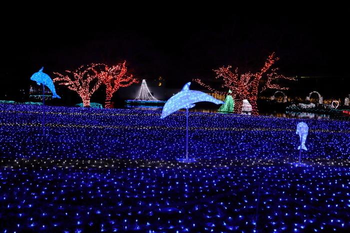 【東武動物公園】ウィンターイルミネーション_f0348831_23370523.jpg