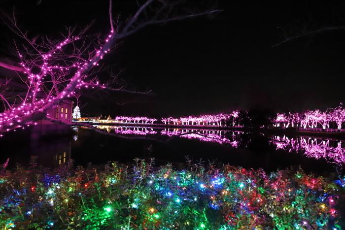 【東武動物公園】ウィンターイルミネーション_f0348831_23374669.jpg