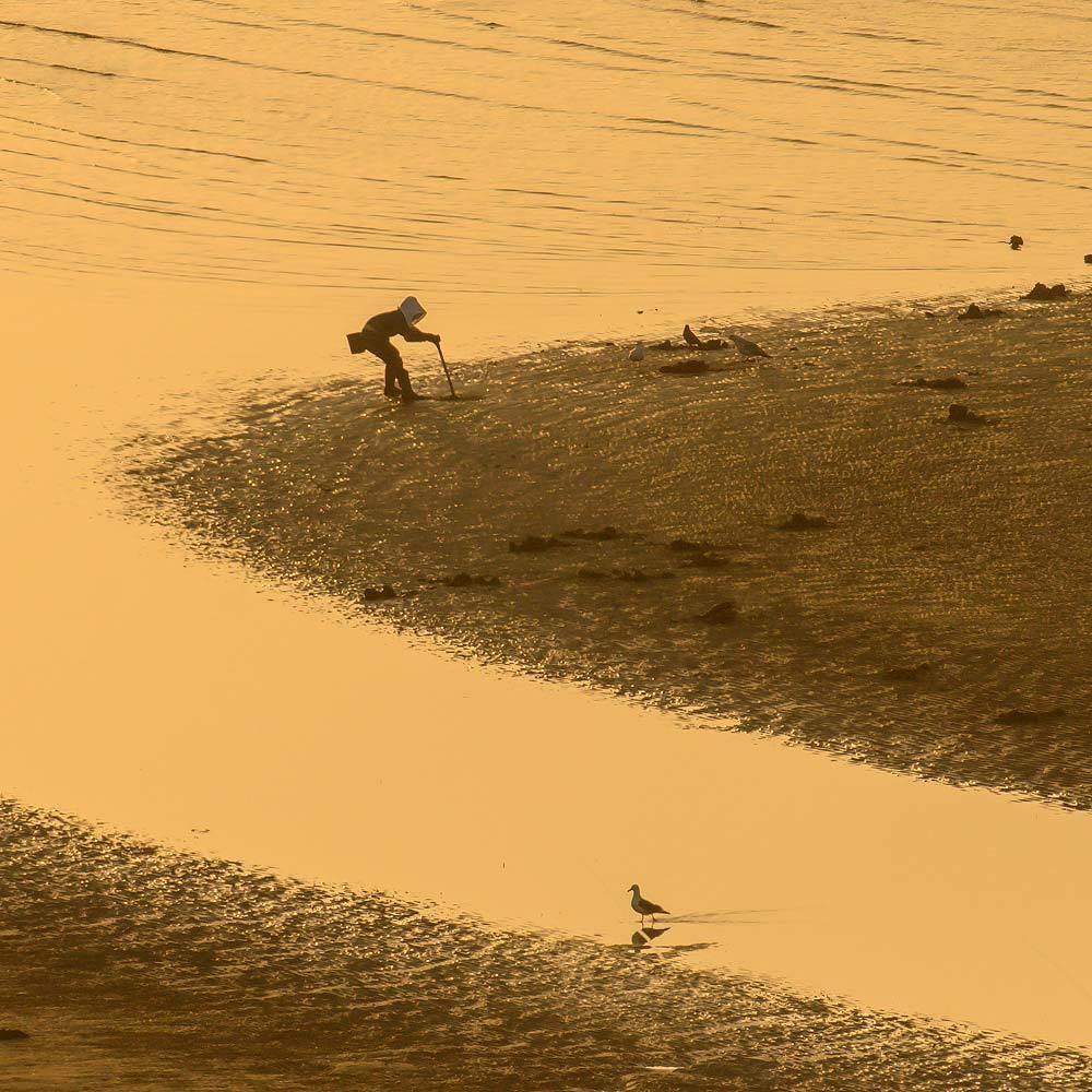 ✔ 干潟の砂模様=熊本県:御輿来海岸_d0238245_15373163.jpg