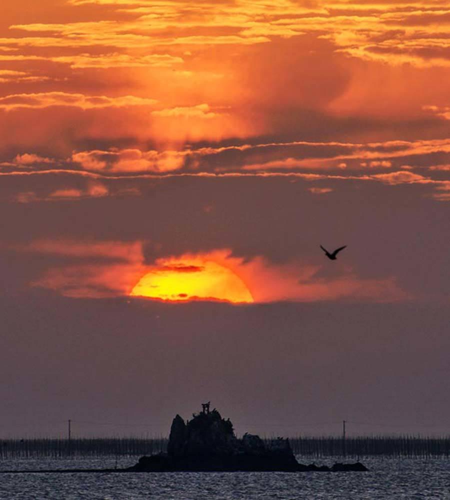 ✔ またしても雲が・・・=熊本市︰緑川河口_d0238245_20295985.jpg