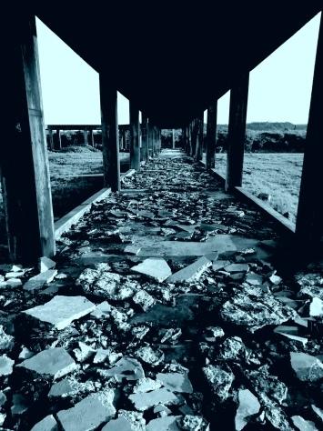 2月7日 とーるのお散歩コース② 夕日が見える丘→久部良バリ→塩工場跡地_b0158746_22522638.jpg