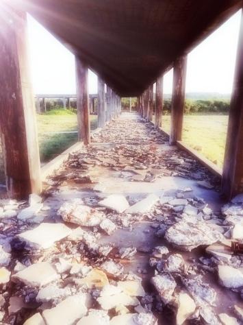 2月7日 とーるのお散歩コース② 夕日が見える丘→久部良バリ→塩工場跡地_b0158746_22562204.jpg