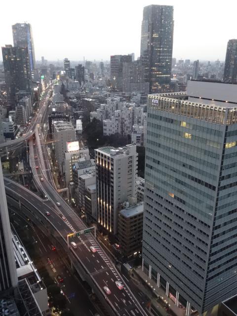ANAインターコンチネンタルホテル東京 (4)_b0405262_1244174.jpg