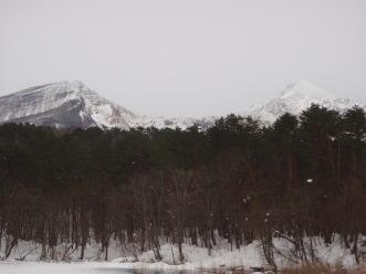雪の五色沼探勝路で「スペシャル」探し_a0096989_21192864.jpg