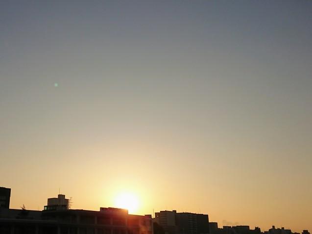 徳島でのごはん_e0167593_22052893.jpg