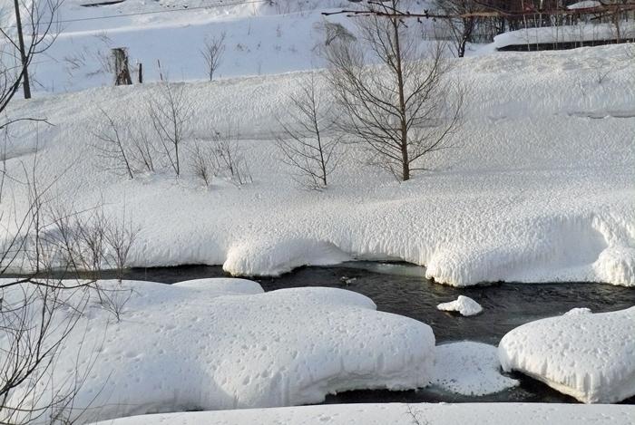 雪景色_d0162994_09133425.jpg