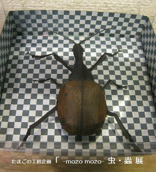 たまごの工房企画 「 -mozo mozo- 虫・蟲  展 」 その3_e0134502_11283157.jpg