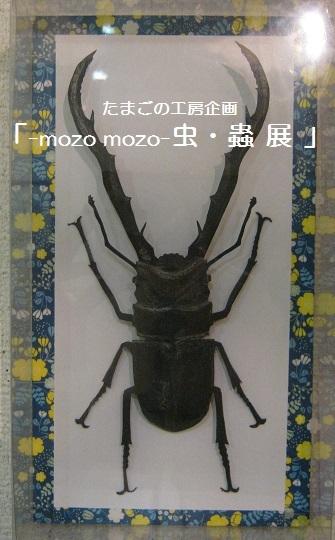たまごの工房企画 「 -mozo mozo- 虫・蟲  展 」 その3_e0134502_11293409.jpg