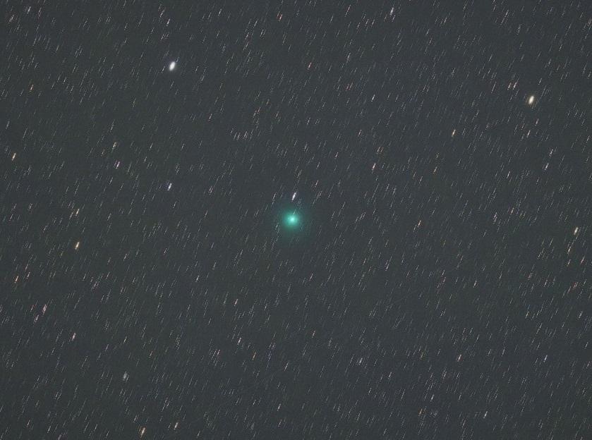 2月8日の岩本彗星(C/2018 Y1)_e0344621_12165406.jpg