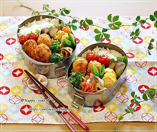 かにコロッケ弁当と牛肉大根の炒め煮とわんこ♪_f0348032_17484837.jpg