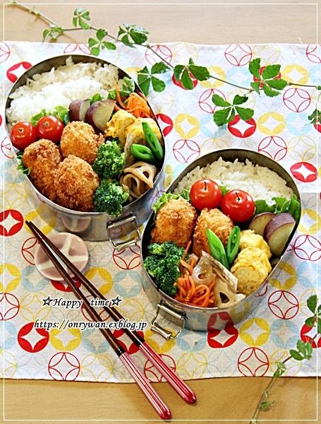 かにコロッケ弁当と牛肉大根の炒め煮とわんこ♪_f0348032_17490071.jpg