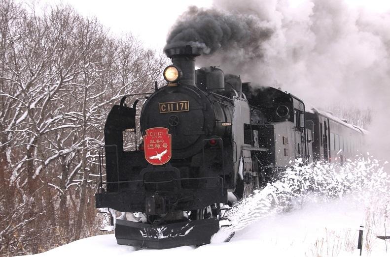 危険な寒さだって 2月8日_f0113639_18014277.jpg