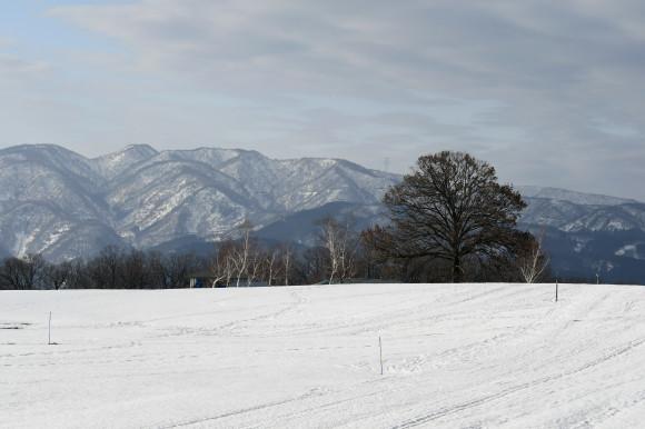 キゴ山(2)_c0093046_17284189.jpg