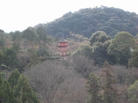 日本滞在 4 - 清水から三十三軒堂へそして大阪 -_a0280569_144288.jpg