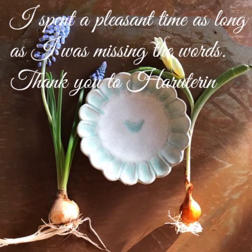 春てりんさん、ありがとうございました。_d0091671_07035670.jpg