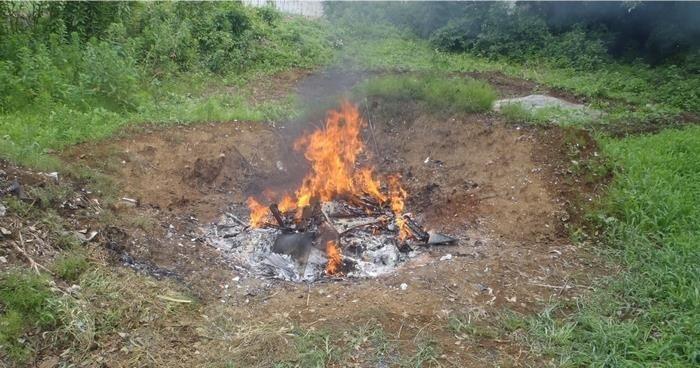 植物残渣の後始末(2) 野焼き_b0391989_23343086.jpg
