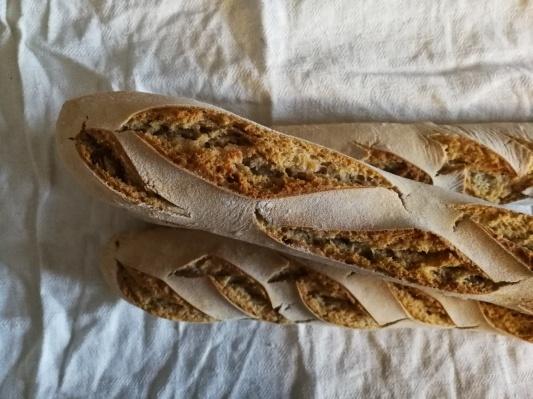 小麦粉で自家製酵母 サワードウ_d0090294_16585468.jpg