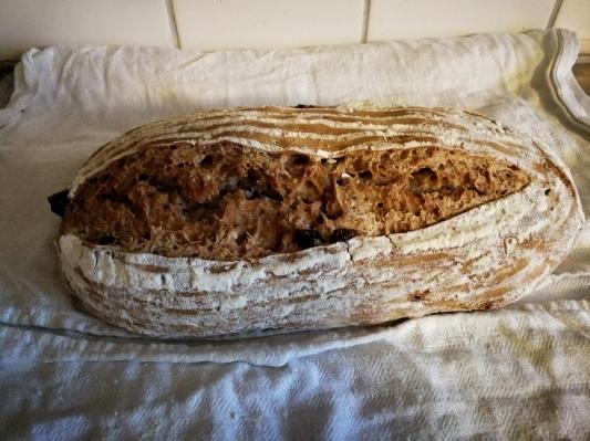 小麦粉で自家製酵母 サワードウ_d0090294_17360883.jpg